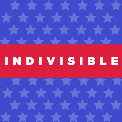 Indivisible - IL 8th