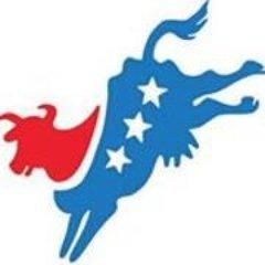 Delaware County New York Democratic Committee